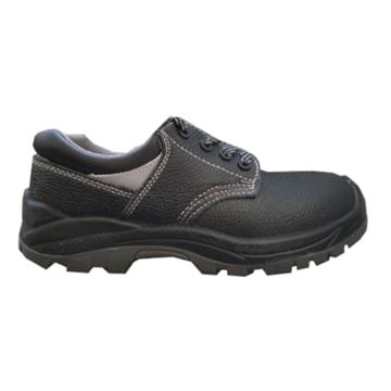 Imagen de Zapato Treck Lider con Puntera de Acero